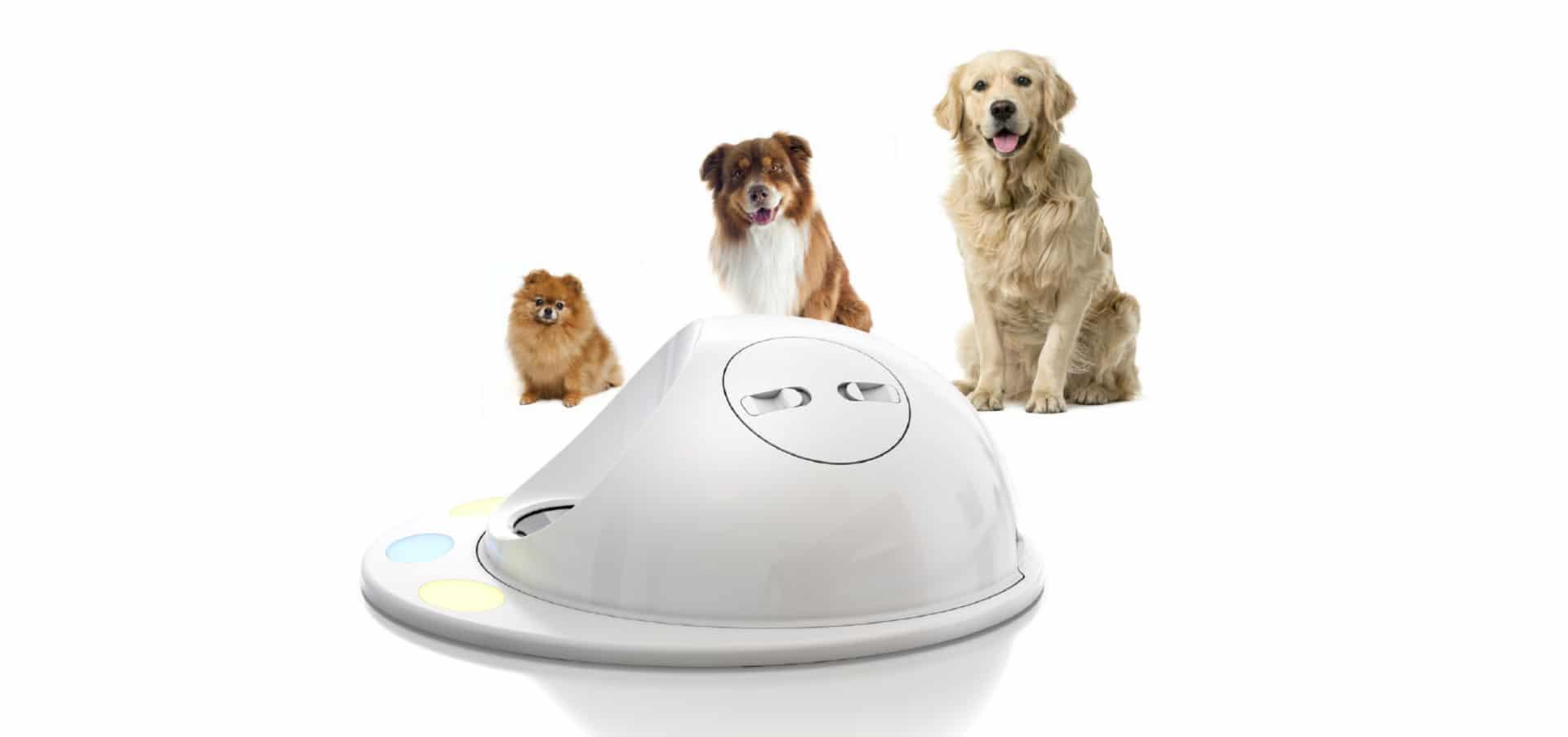 clever pets kickstarter